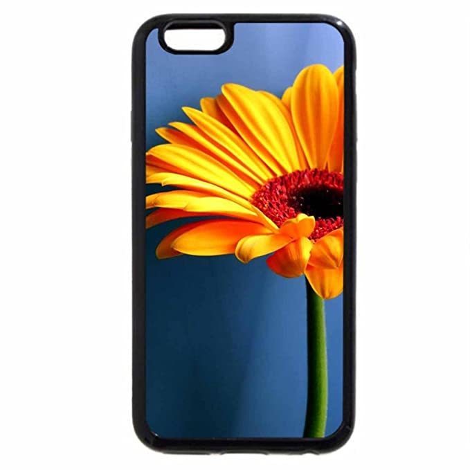 Iphone 6s Plus Case Iphone 6 Plus Case Girasole Su Sfondo Blu