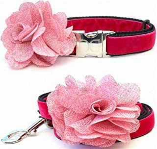 "product image for Diva-Dog 'Christie' Custom Medium & Large Dog 1"" Wide Velvet Dog Collar with Plain or Engraved Buckle, Matching Leash Available - M/L, XL"