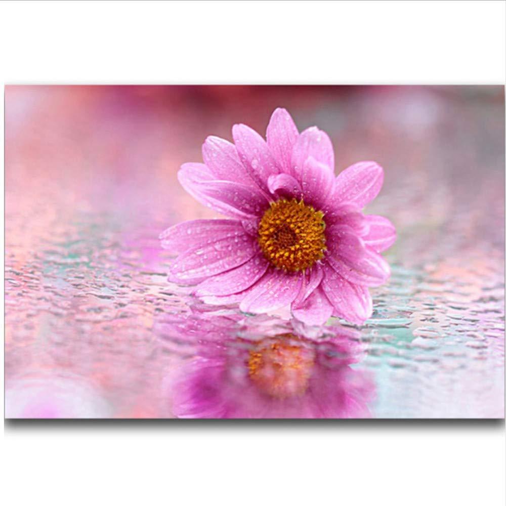 WFYY DIY Malen Nach Zahlen Kits Chrysantheme Im Im Im Schlaf Auf Segeltuchgeschenken Handgemalte Digitale Bilder 16X20 Inch Holzrahmen B07PN18HXG | Auktion  0a0f32