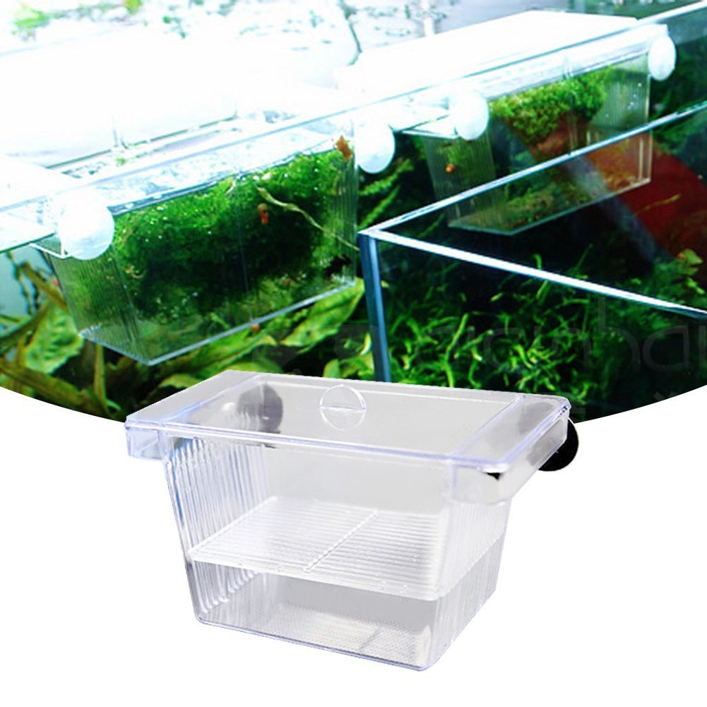 Boite d'incubation en acrylique à poser dans un aquarium Betta Aquarium tropical Deux étages Incubateur flottant kaersishop BHBUKALIAINH3068