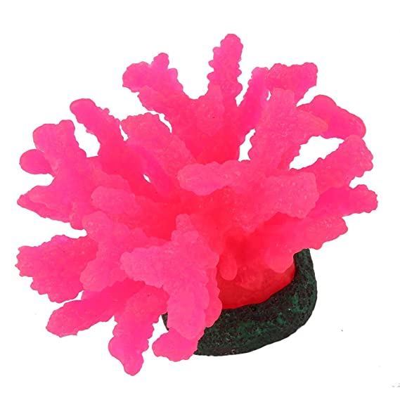 Amazon.com : eDealMax peces de acuario tanque Artificial paisaje Coral Planta de agua Weed decoración Fucsia : Pet Supplies