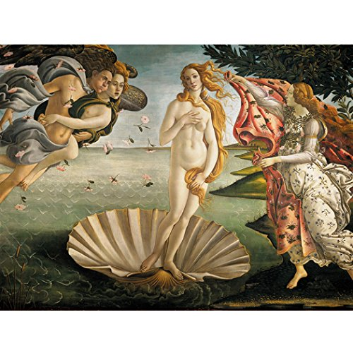 Miss 2 Jigsaw Puzzle Naissance of Venus Oil Painting by Botticelli 1500 (Venus Is The God Of)