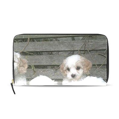 Amazon.com: Cartera para mujer, diseño de cachorros de ...
