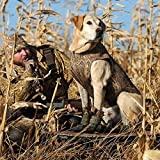 Avery Sporting Dog Ruff Stand 90016