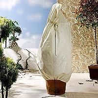 ALLOMN Plantenhoes, 2 stuks, vorsthoes voor planten en planten, winterplanten, vorstbescherming, planten, verwarmende…