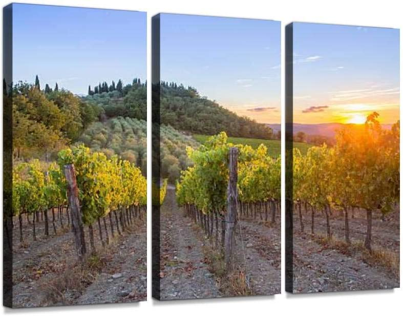 Tuscany Vineyards Sunset Olive Fields And Pictures Print On Canvas Wall Artwork Modern Photography Home Decor Unique Pattern Stretched And Framed 3 Piece Posters Prints