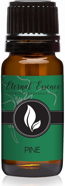 Pine Needle Premium Grade Fragrance Oil - 10ml - Scented Oil