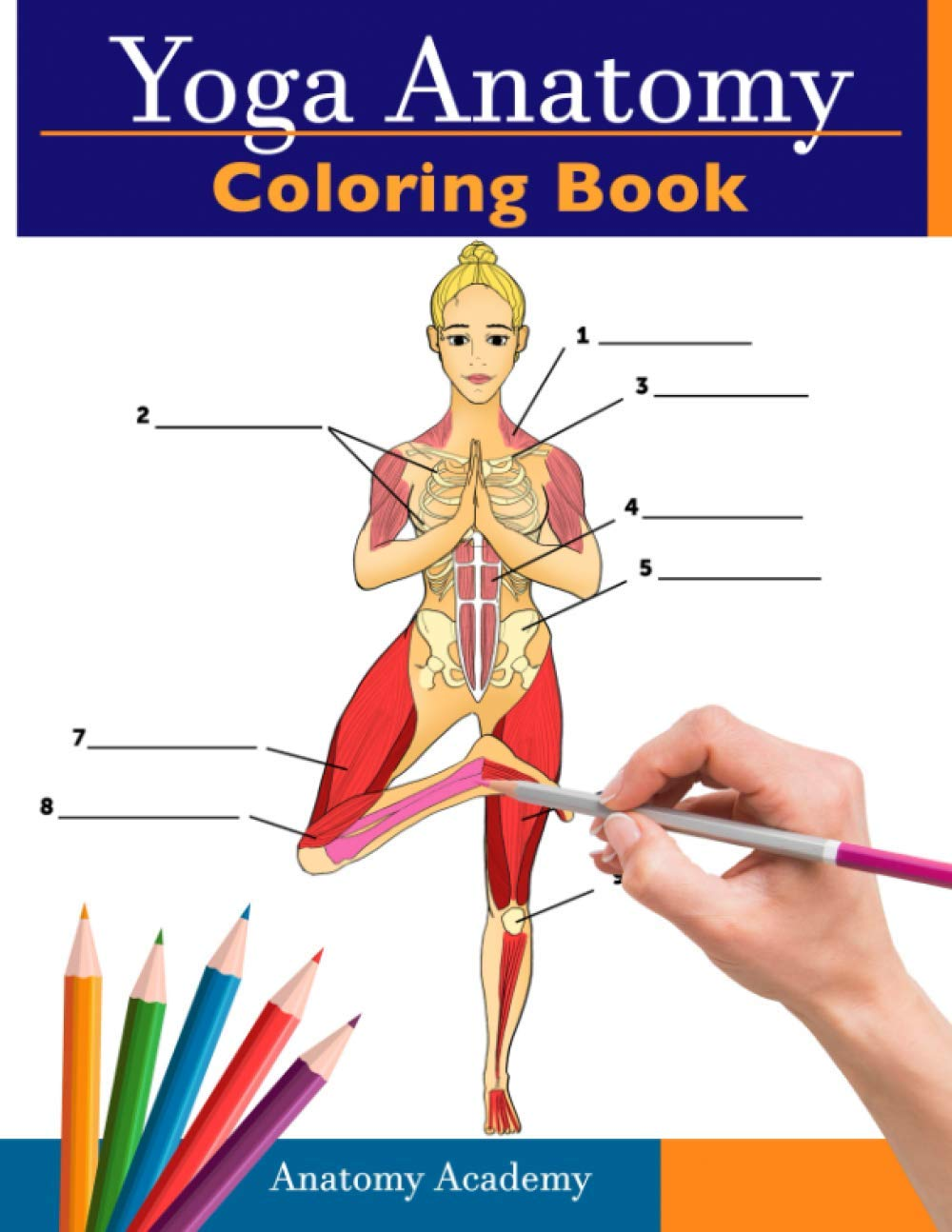 Yoga Anatomy Coloring Book: 3-in-1 Compilation | 150+ Incredibly Detailed Self-Test Beginner, Intermediate & Expert Yoga Poses Color workbook