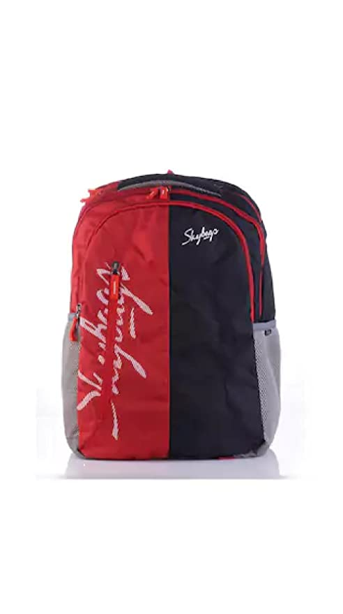 Skybags Neon Backpacks (Red): Amazon.in: