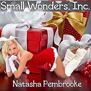Small Wonders, Inc. Audiobook