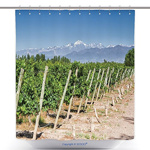 Mountain Province Costume - Polyester Shower Curtains Vineyards Volcano Aconcagua Cordillera Andes Mountain Range In Maipu Argentine Province Of 409829482 Polyester Bathroom Shower Curtain Set With Hooks