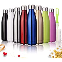 king do way Insulated Stainless Steel Water Vacuum Bottle Flask Double-walled with a Brush for Outdoor Sports Hiking Running, 500ml /18 oz