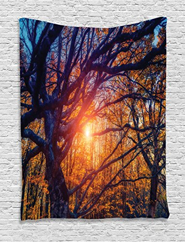 Farm House Decor Tapestry by Ambesonne, Majestic Autumn Trees by Sunlight Natural Park. Carpathian, Ukraine, Wall Hanging for Bedroom Living Room Dorm, 40 X 60 Inches, Orange Blue and Black by Ambesonne