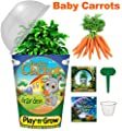 Children's Organic Plant Kit - Baby Carrot Window Garden: Complete Indoor Grow Set - Seeds, Soil, Planter, Greenhouse Dome, Water Tray & Cup, Growing Guide, Diary. Unique Educational DIY Kid's Gift.