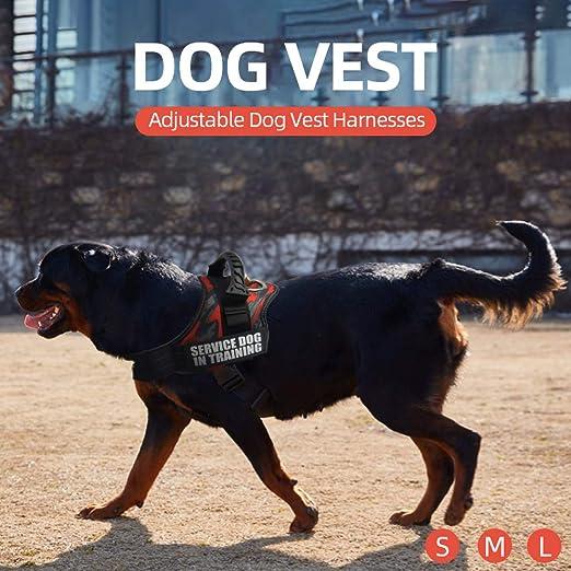 Flytise Arneses para Perros Servicio de arneses para Perros ...