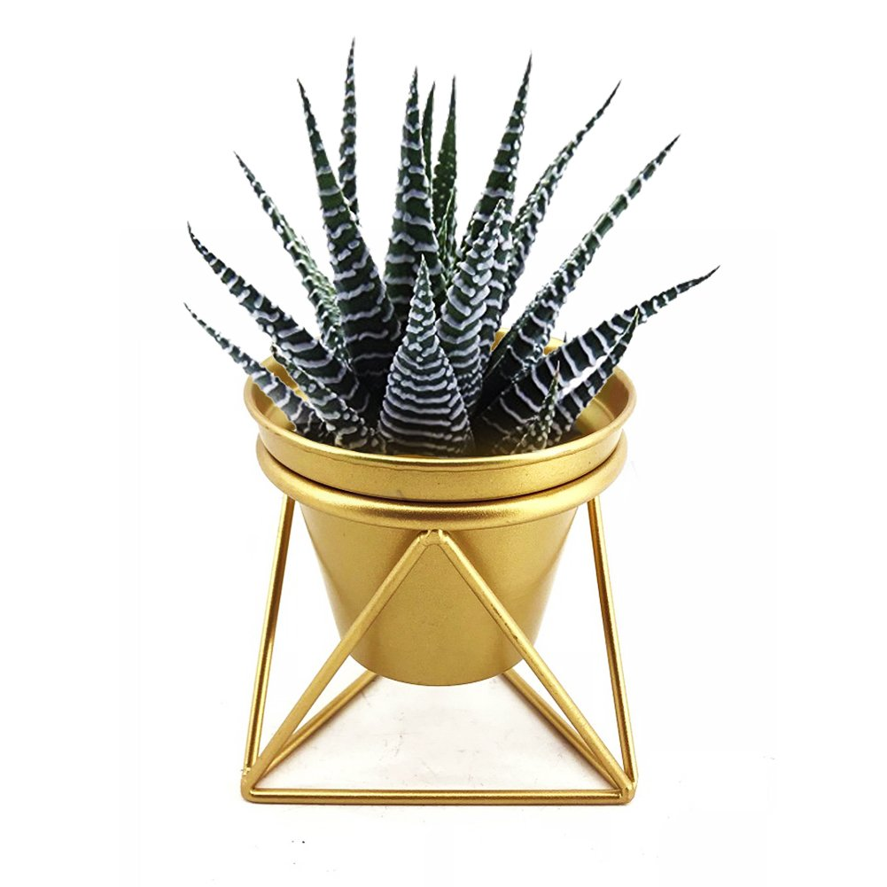 Plant Urns Planter Pot Indoor Geometric Metal Stand Balcony Tabletop Succulent Pot Bonsai Decorative Home Garden Kitchen Modern Plant Holder for Cactus Flower Plant (S)