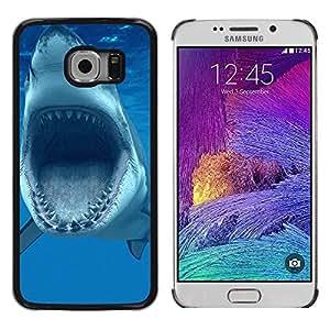TopCaseStore / la caja del caucho duro de la cubierta de protección de la piel - Shark Jaws Teeth Vicious Blue Underwater - Samsung Galaxy S6 EDGE SM-G925
