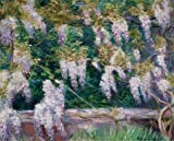 Oil Painting 'Blanche Hoschede Monet - Wistarias At Giverny' 18 x 22 inch / 46 x 57 cm , on High Definition HD canvas prints is for Gifts And Bath Room, Dining Room And Kids Room Decoration