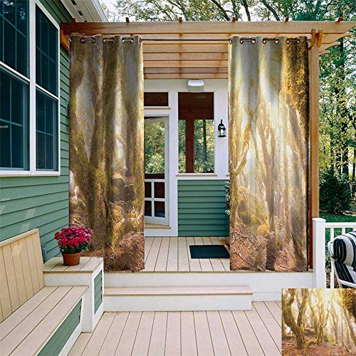 Lavender Mist Block - Rainforest, Outdoor Curtain Kit, Morning Sun Rays Mist in Virgin Mountain Forest Moss on Trees Natural Paradise, for Patio W72 x L96 Inch Green Brown