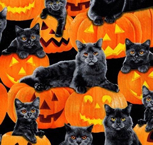 Fat Quarter Depot Black Cats Pumpkins Cotton FQ - 18' Blender