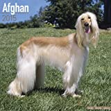 Afghan Dog Calendar - Afghan Hounds Calendar - Breed Specific Afghans Calendar - 2015 Wall calendars - Dog Calendars - Monthly Wall Calendar by Avonside