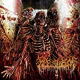 Traumatic Reconfiguration by Fleshrot (2010-05-04)