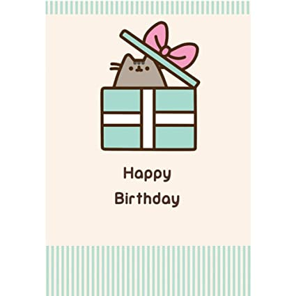 Amazon Com Pusheen Happy Birthday Card Office Products