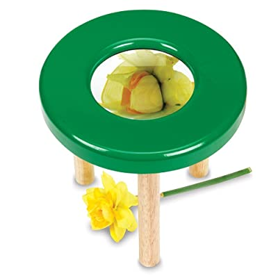 Learning Resources Tabletop Tripod Magnifier, 4x Magnifier: Toys & Games
