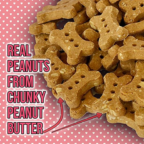 The Dog Bakery Wheat Free Bones Natural Made in The USA Healthy Dogs Treat Biscuits Bone Treats Great for Training Limited Ingredients Crunchy Classics (Peanut Butter, Original Size Bones)