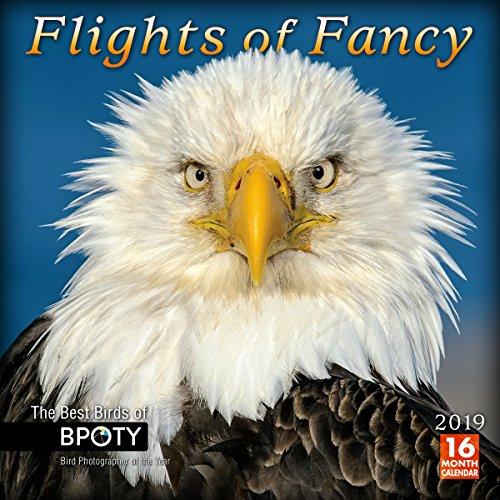 Bird Fancy (Flights of Fancy: The Best Birds of BPOTY 2019 Wall Calendar)