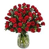 Fresh Flower & Plant Centerpieces