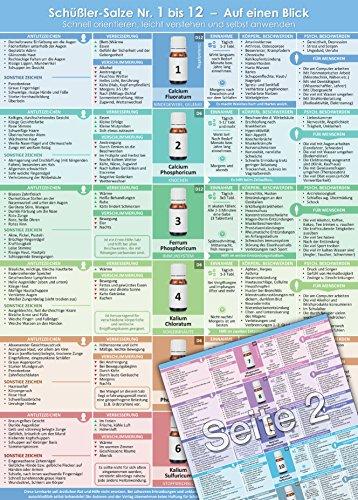 Schüßler-Salze Nr.1 bis 12 - Auf einen Blick: Schnell orientieren, leicht verstehen und selbst anwenden