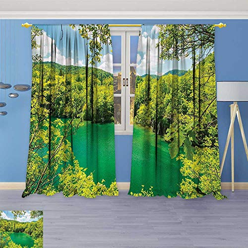 Crystal Astoria Clear (Philiphome Bedroom Blackout Curtains Set -Picturesque Crystal Lake Inside Forest Fresh Spring Season Landscape Green Window Treatments Home Decoration Curtains)