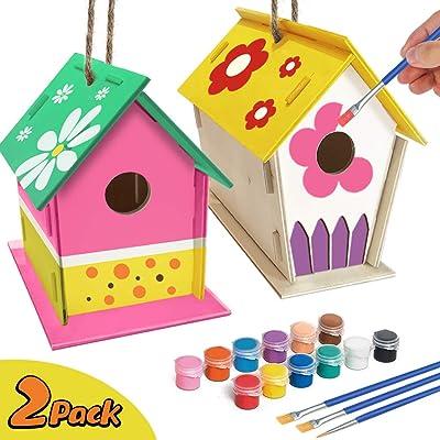 ORIENTAL CHERRY CraftsforKidsAges4-8-2PackDIYBirdHouseKit-BuildandPaintBirdhouse(IncludesPaints&Brushes)WoodenArtsforGirlsBoysToddlersAges3-58-12: Toys & Games