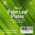 Palm Leaf Plates - All Natural 100% Biodegradable - Eco Friendly - Heavy Duty Disposable Wood Plates