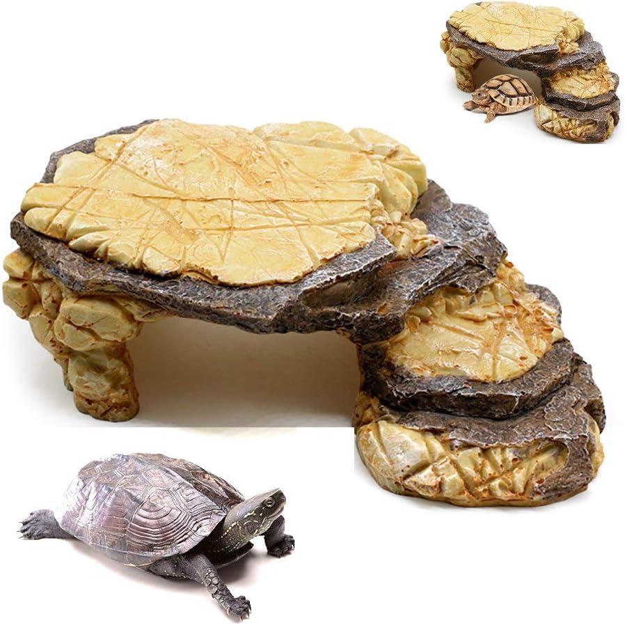 YXYXN Plataforma para Tomar El Sol De La Tortuga, Plataforma Flotante para La Tortuga, Cueva del Reptil Escalera De La Plataforma Flotante De La Rana Tortuga Escalera: Amazon.es: Productos para mascotas