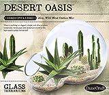 DuneCraft DD-0742 Desert Oasis Terrariums