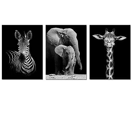 Amazon.com: Visual Art Decor Modern Black And White Canvas Wall Art ...