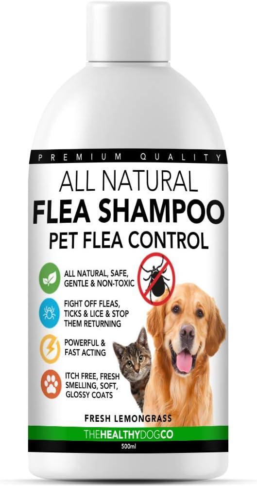 The Healthy Dog Co Champú antipulgas Completamente Natural | Limoncillo | 500ml | El Mejor Tratamiento para Perros y Gatos | Fórmula Potente y Segura | Mata y controla pulgas garrapatas y piojos