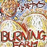 Search : Burning Farm