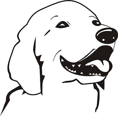 Amody Acero Inoxidable Perro de Mascota Imagen Huesos ...