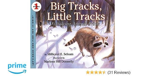 Amazon com: Big Tracks, Little Tracks: Following Animal