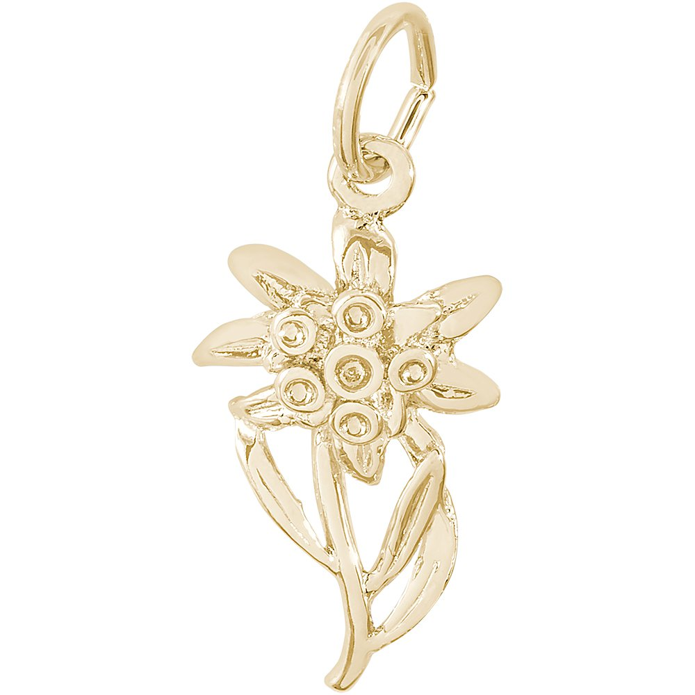 Rembrandt Charms 10K Yellow Gold Edelweiss Charm (19 x 10.5 mm)
