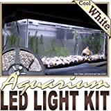 Biltek 16.4' ft Cool White Aquarium Fish Tank White LED Lighting Strip + Dimmer + Remote + Wall Plug 110V - Main Lighting Fresh Water Salt Water Tanks Water Resistant 3528 SMD Flexible DIY 110V-220V