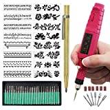 Electric Micro Engraver Pen Mini DIY Engraving Tool Kit for Metal Glass Ceramic Plastic Wood Jewelry with Scriber Etcher 30 Bits and 6 Polishing Head and 16 Stencils by WALANG (Red)