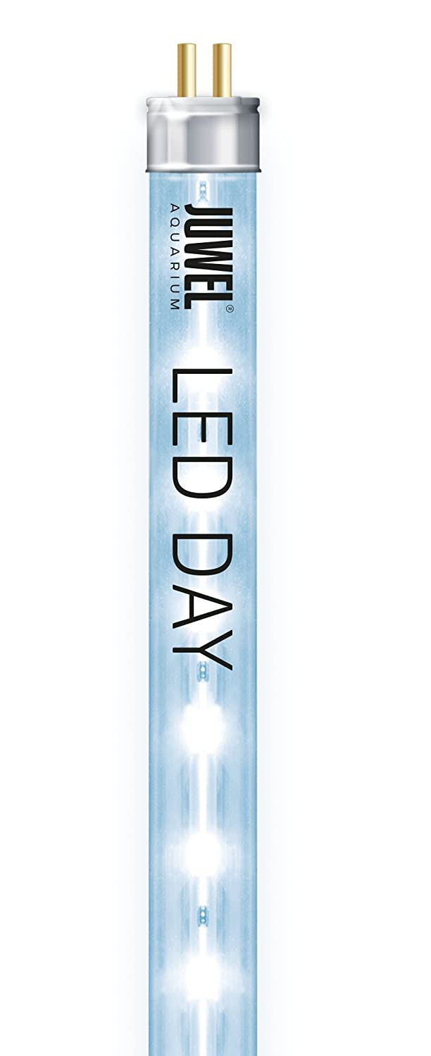 Juwel Day LED Tube d'Éclairage pour Aquariophilie 9000 K 29 W 1047 mm JUWEM 86810