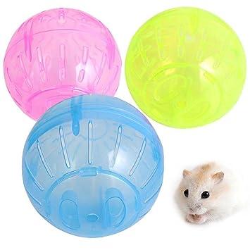 Perdida de peso hamster