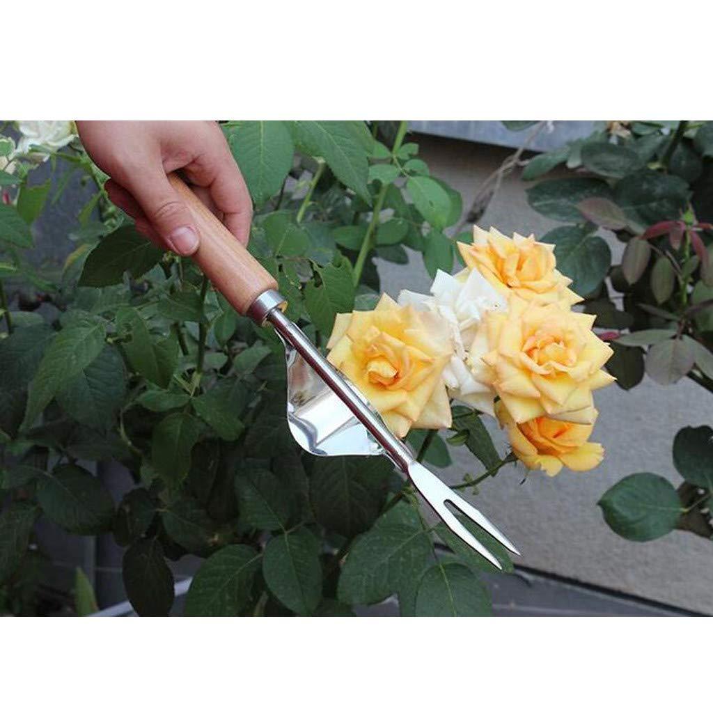 Home Estrattore per diserbo Manuale in Acciaio Inox con Design a Becco Chiuso con Impugnatura in Legno massello Diserbatrice Manuale per Giardini