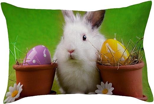 Funda de cojín de Pascua, 30 x 50 cm, diseño de dibujos animados ...