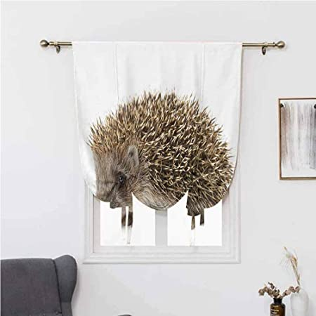 7x10 FT Hedgehog Vinyl Photography Backdrop,Small Cute Mammal with Spiked Hair on Its Back and Sides Wildlife Photography Background for Baby Shower Bridal Wedding Studio Photography Pictures